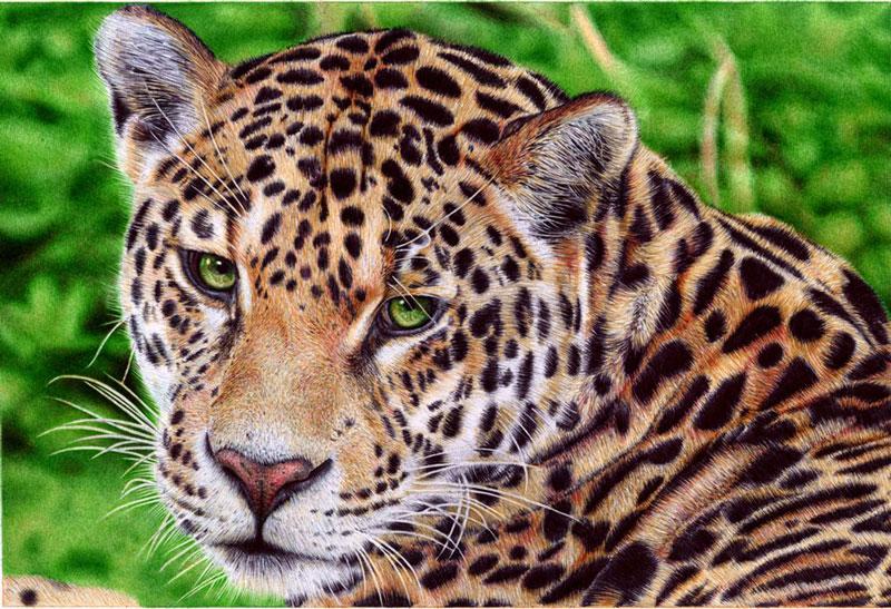 jaguar___ballpoint_pen_by_vianaarts