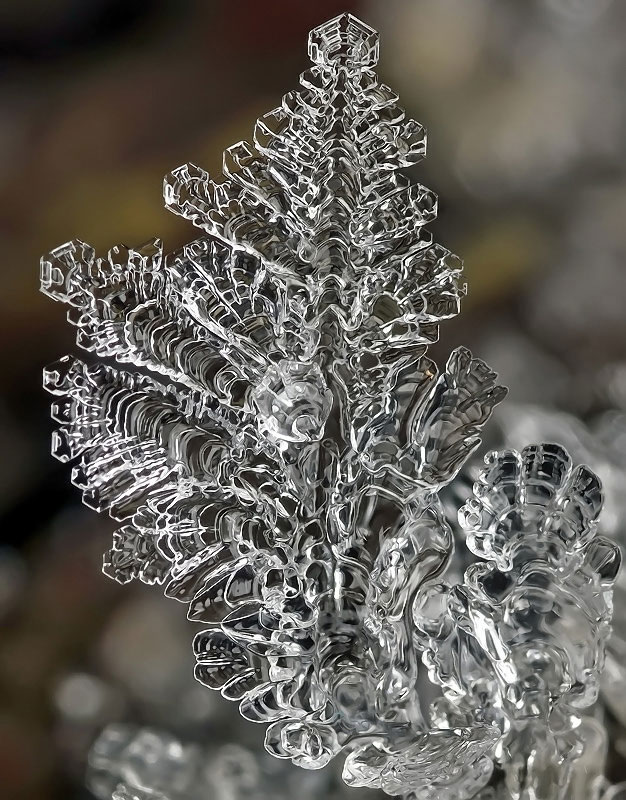macro-photograph-of-a-snowflake-by-andrew-osokin-8