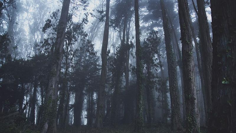 Пугающие-места-4