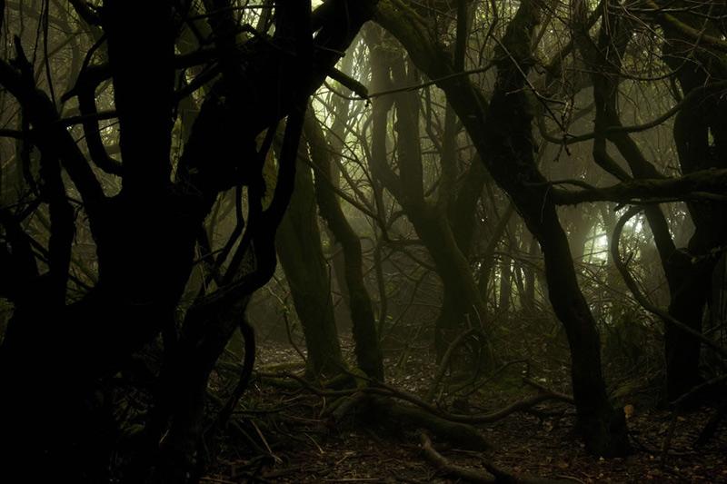 Пугающие-места-6