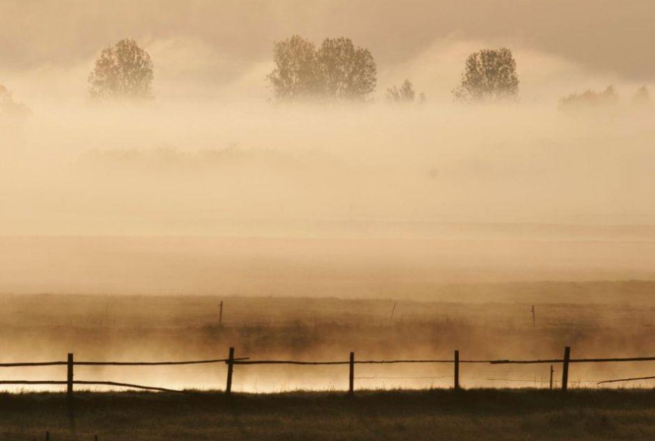 Biebrza River, Biebrza National Park - spring fog above the Narew Valley / Piotr Skórnicki / Agencja Gazeta