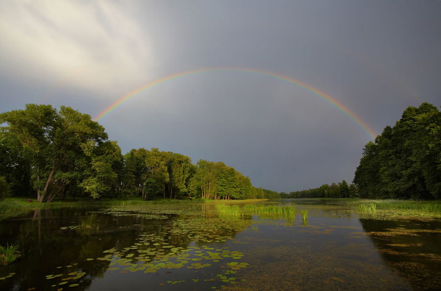 No matter what language you speak, seeing a rainbow, any rainbow, is a stunning sight to behold. This one was seen over Lake Väimela Alajärv, in Võru County, Estonia. Seeing a double rainbow is double the pleasure, but some people claim that the double rainbow phenomenon is not as rare as most folks believe. Sometimes there is a second rainbow, but it is so dim that we simply miss it. You can make out the faint shape of the second rainbow in the top right of this photo. Photo #2 by Vaido Otsar