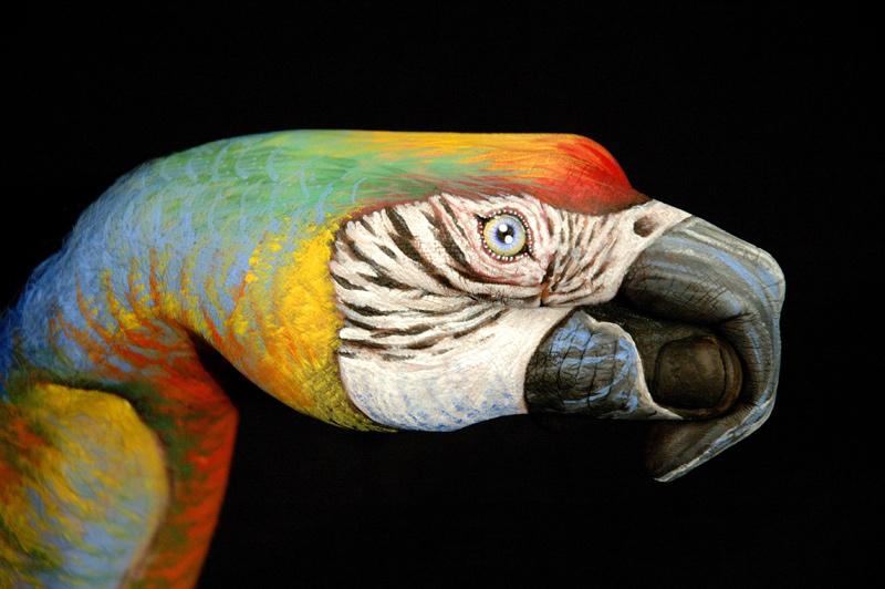 Parrot-un-black1