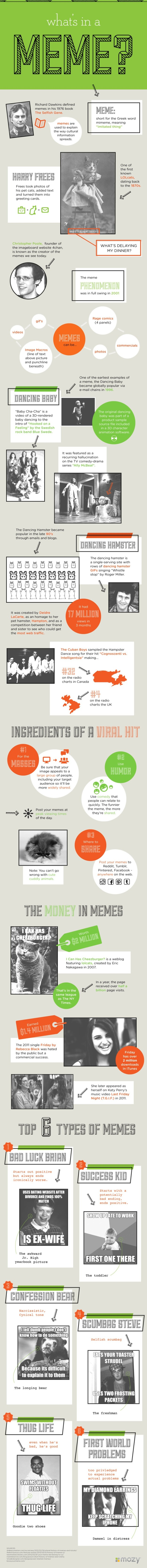 meme-infographic