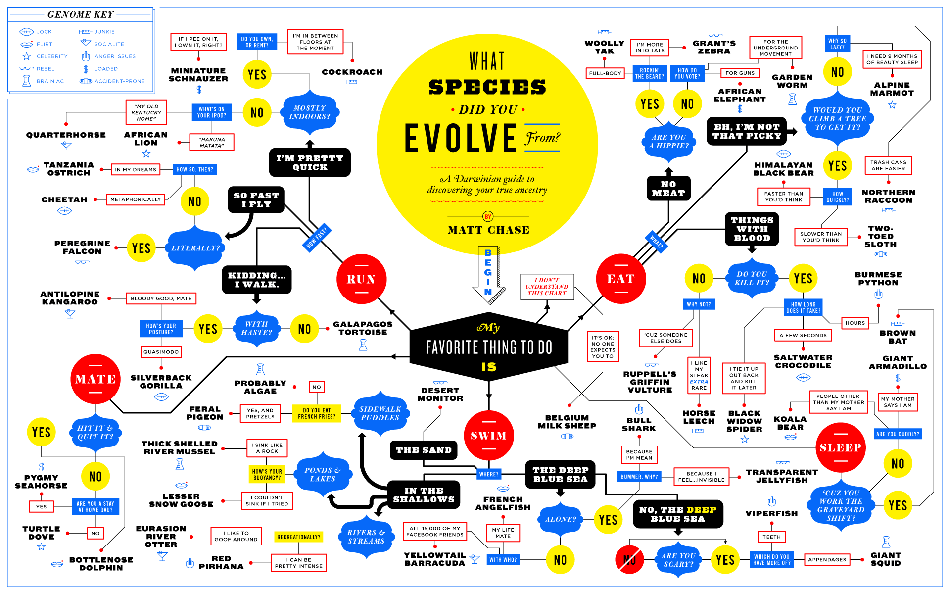 What species did you evolve from?