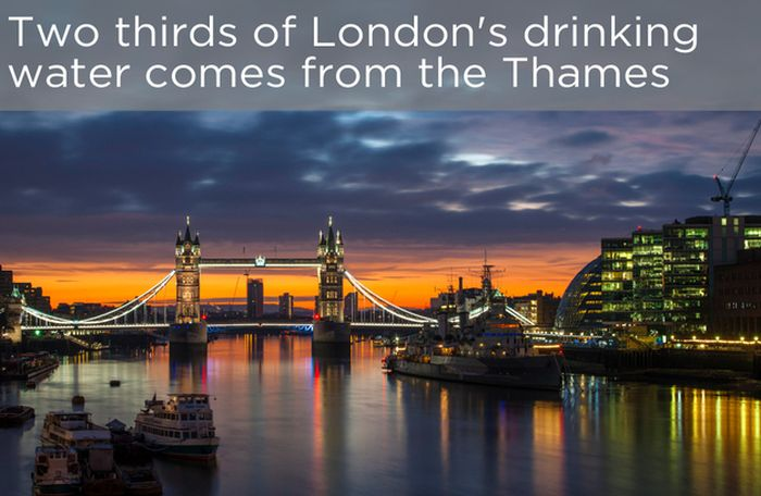 facts_you_probably_dont_know_about_the_river_thames_08