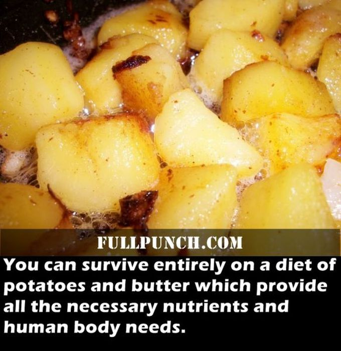 fascinating_health_facts_08