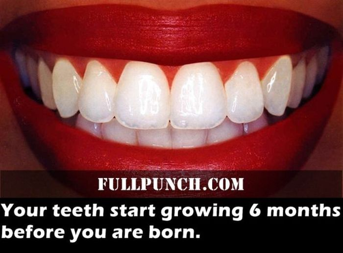 fascinating_health_facts_16