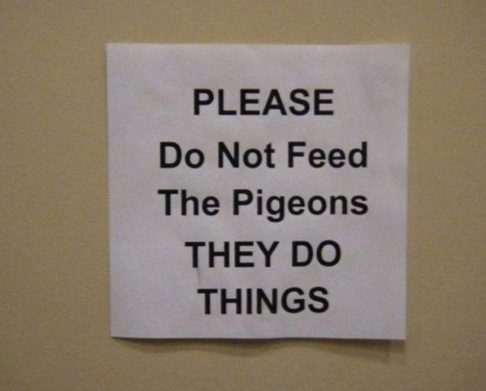 funny_signs_38