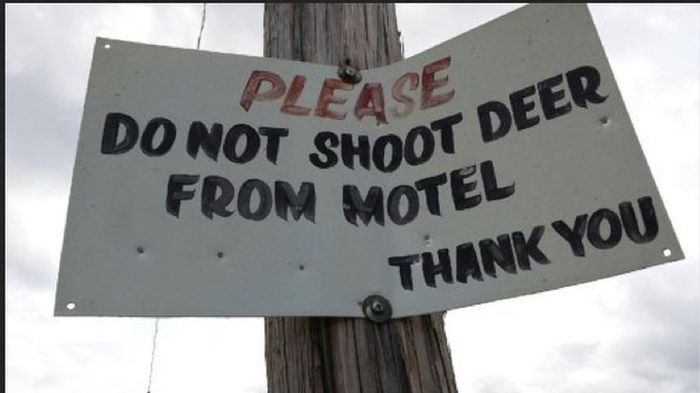 funny_signs_42