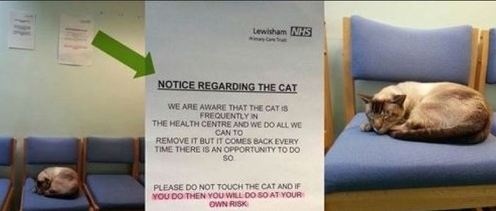 funny_signs_95