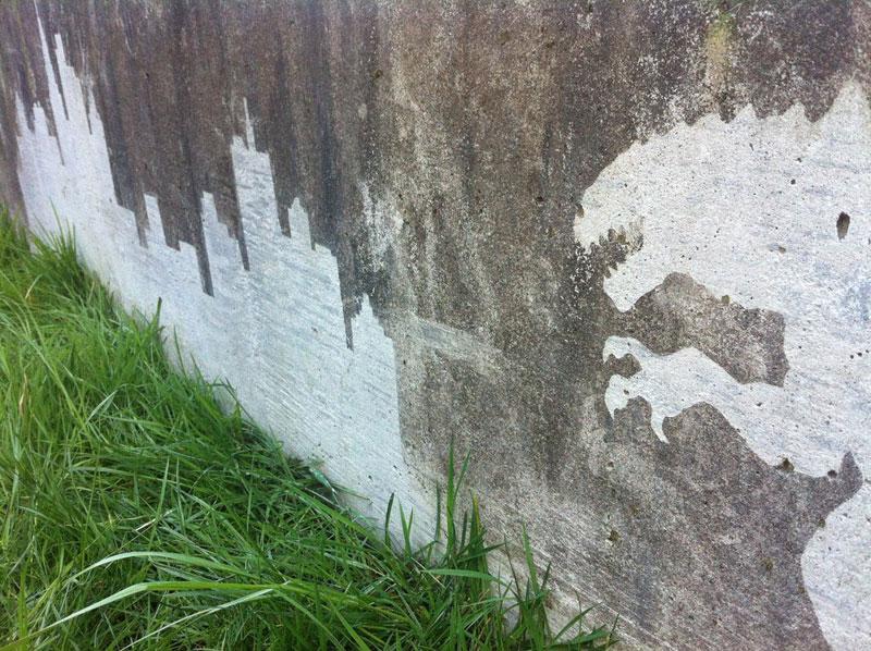 reverse-graffiti-by-tess-jakubec-5