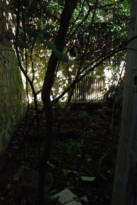 whittingham-asylum-preston-england-31