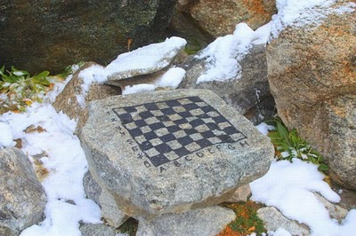 Unusual-chess-boards-53
