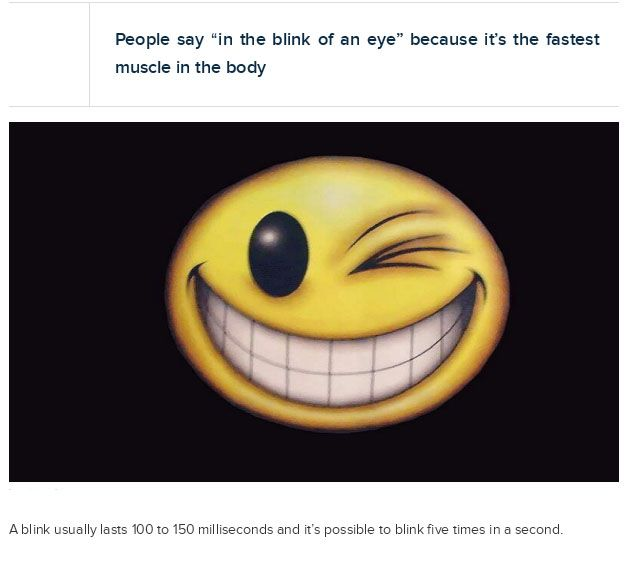 crazy_facts_about_your_eyes_07