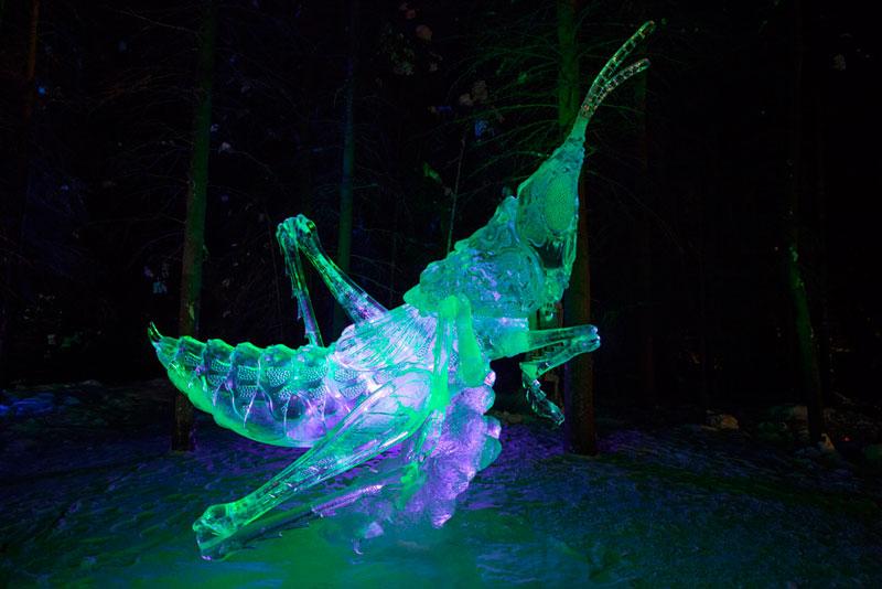 ice-alaska-world-ice-art-championships-2013-single-block-14