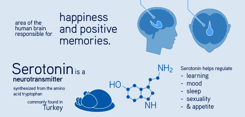 """science and human happiness Synopsisgratitude is the """"forgotten factor"""" in happiness research we are engaged in a long-term research project designed to create and disseminate a large body of novel scientific data on the nature of gratitude, its causes, and its potential consequences for human health and well-being."""