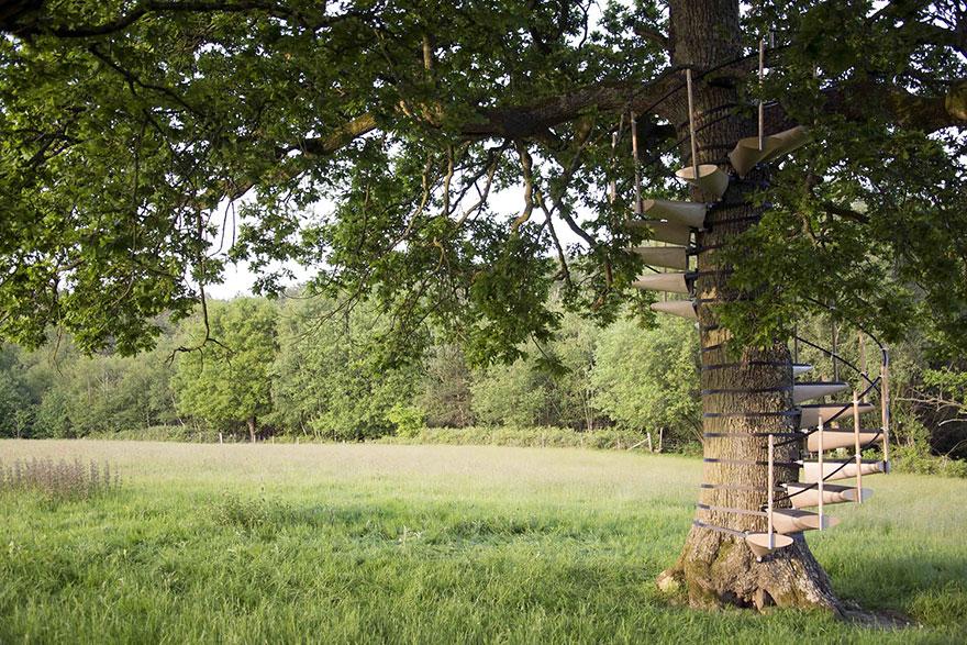 canopy-tree-stairs-thor-ter-kulve-robert-mcintyre-canopystair-3