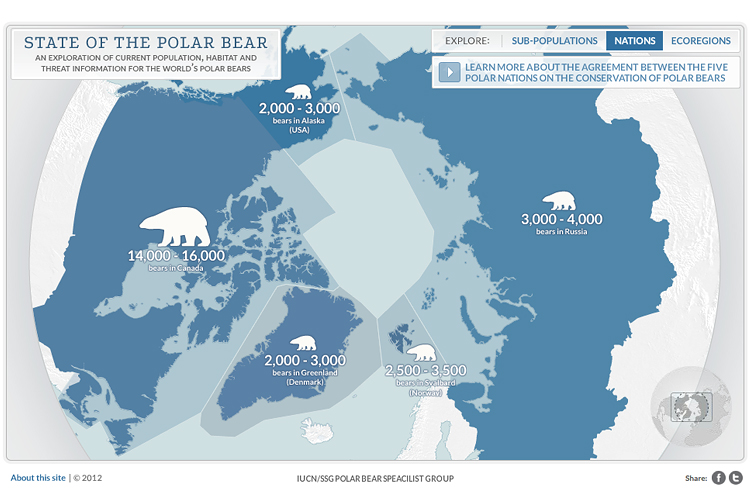 state-of-the-polar-bear