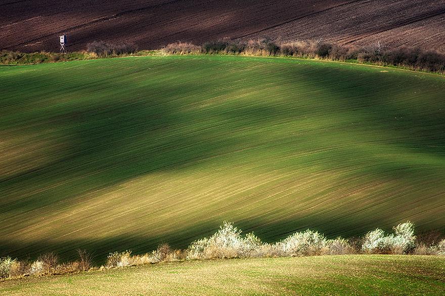 Hypnotizing Beauty Of Moravian Fields Memolition