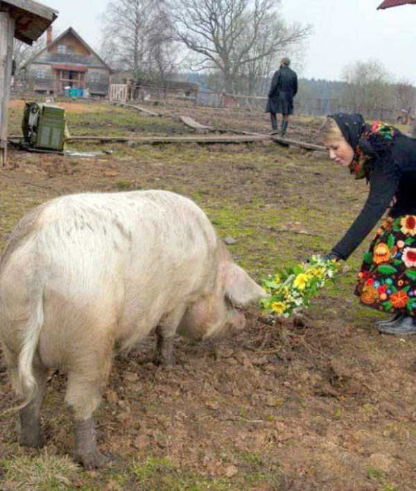 russian-village-funny-pics-16
