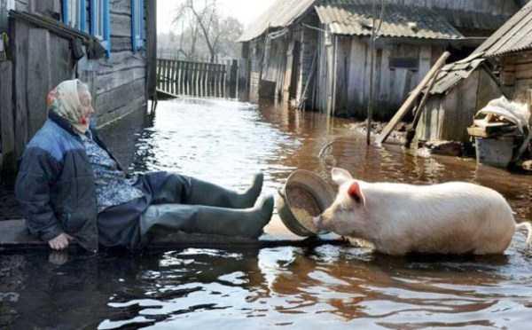 russian-village-funny-pics-2