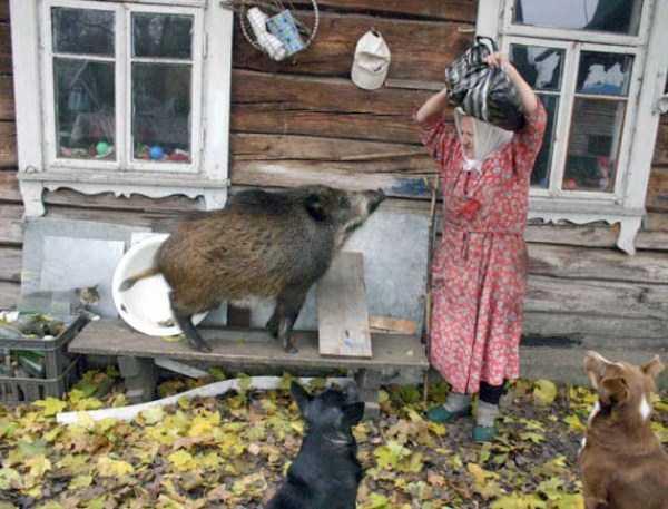 russian-village-funny-pics-7