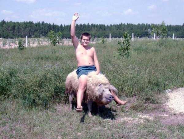 russian-village-funny-pics-4