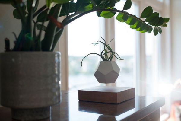 floating-levitating-planters-lyfe-13