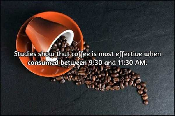 facts-about-coffee-3