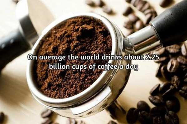 facts-about-coffee-4