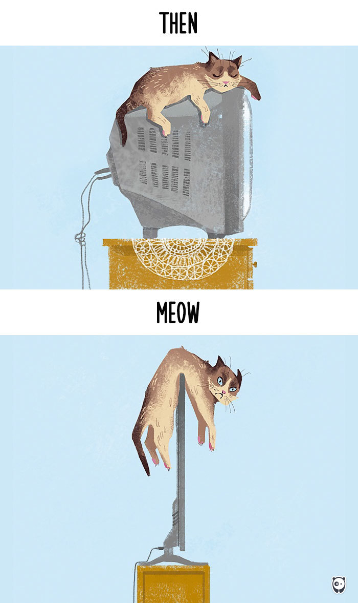 cats-then-now-funny-technology-change-life-1-5715f4a7a450f__700