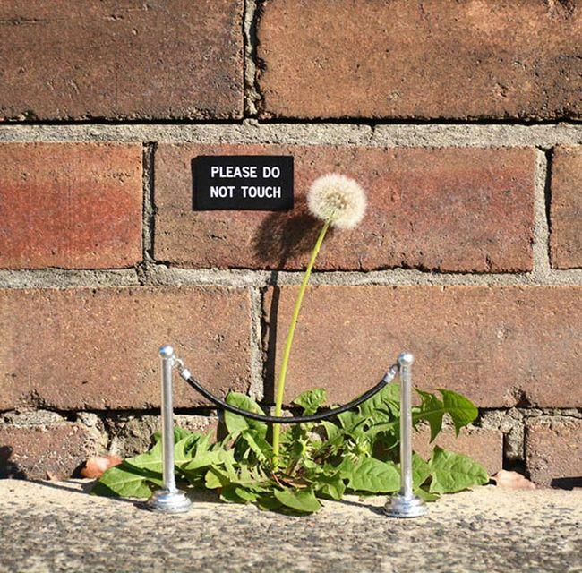 random-and-ridiculous-acts-of-vandalism-that-are-borderline-genius-9