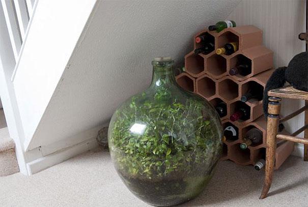 sealed-bottle-garden-david-latimer-3