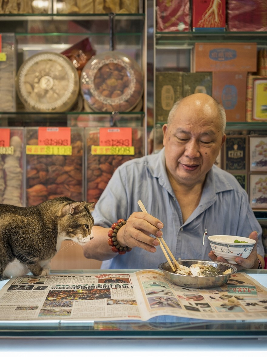 shop-cats-photography-marcel-heijnen-hong-kong-31-5809cda41976e__880
