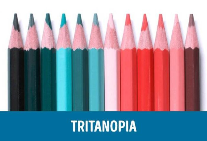 different_types_of_color_04